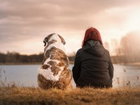 Najbolji prijatelji